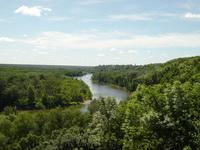 река, лес, деревья, зелень, небо, облака, отражение, природа